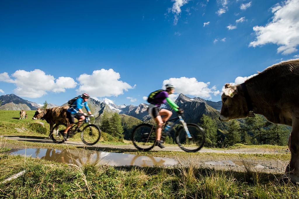 Erlebnisfahrt-mit-dem-E-Bike